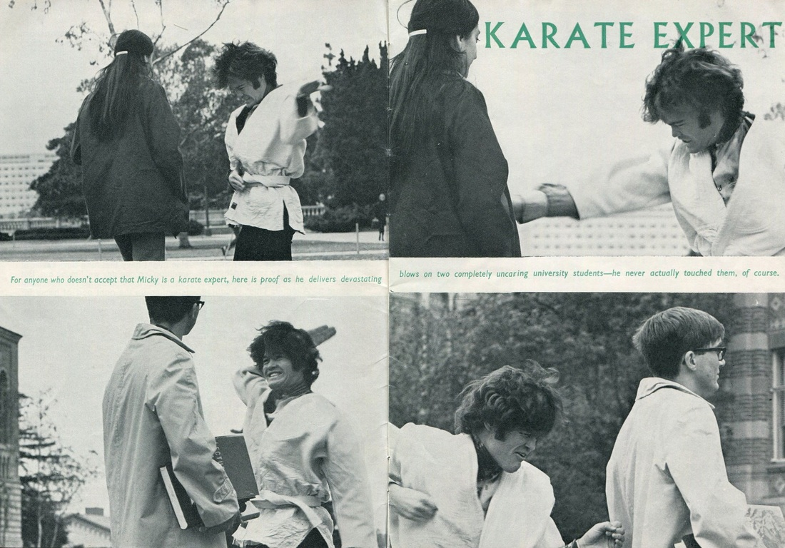 Micky Dolenz Monkees karate