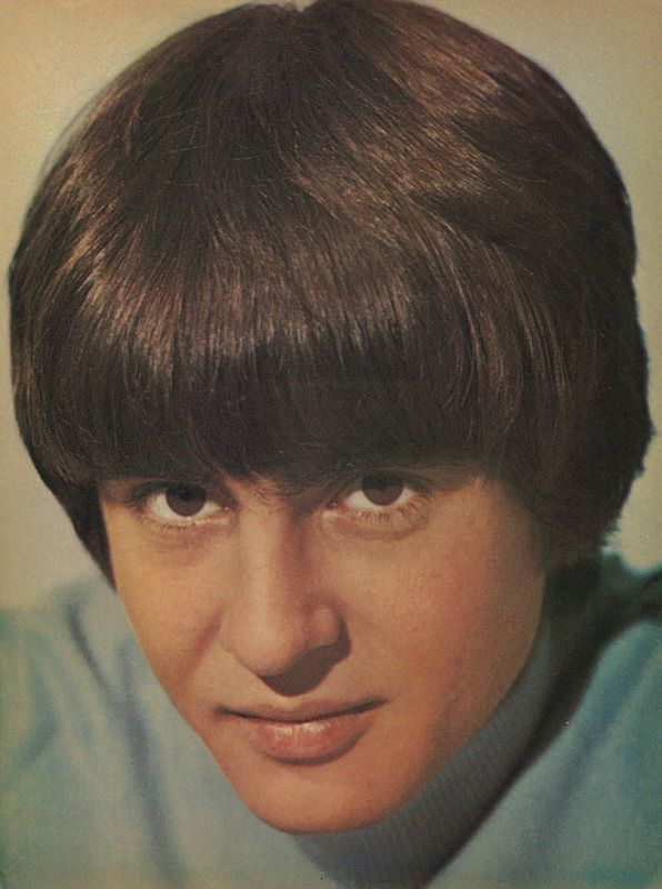 Monkees Davy Jones